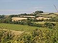 Farmland west of Teignharvey Road - geograph.org.uk - 917489.jpg