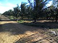 Fazenda Santa Rita - Várzea Redonda PE - panoramio (1).jpg