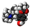 Fesoterodine 3D spacefill.png