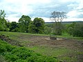 Field Near Muirfad - geograph.org.uk - 431719.jpg