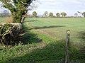 Fields north of Wyck Farm - geograph.org.uk - 630303.jpg