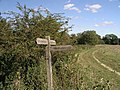 Fingerpost at junction of bridleway 1434-1 and footpath 1441 - geograph.org.uk - 410036.jpg
