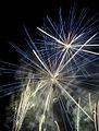 Fireworks at Darling Harbour (5481080140).jpg