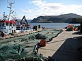 Fishing nets on Portree Harbour - geograph.org.uk - 1046903.jpg