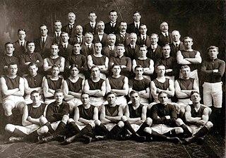 1916 VFL season