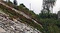Flood dike 防洪堤 - panoramio.jpg