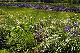 Flower Gardens Combine Plants Of Different Heights, Colors, Textures, And  Fragances To Create Interest And Delight The Senses.