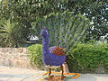 Flower Peacock.jpg