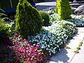 Flowers beside Sanmin Park Walkway 20110420.JPG