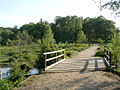 Footbridge at Woodfidley Passage, New Forest - geograph.org.uk - 28333.jpg