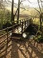 Footbridge over the Dart - geograph.org.uk - 2318940.jpg