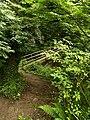 Footpath and footbridge, Overdale - geograph.org.uk - 527268.jpg