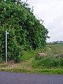 Footpath beside the wood - geograph.org.uk - 857106.jpg