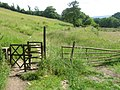 Footpath from Haworth - geograph.org.uk - 1375705.jpg