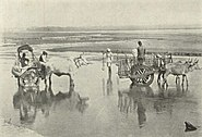Fording an Indian River