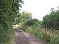 Fosse Way Wiltshire.jpg