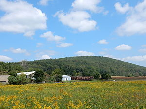 Hegins Township, Schuylkill County, Pennsylvania - Image: Fountain, Hegins Twp, Schuylkill Co PA 05