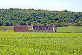 France-003057 - Pass on by.... (16192916735).jpg