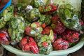 Fresh Pepper (Green and Red).jpg