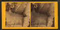 Frost work, from Robert N. Dennis collection of stereoscopic views 2.png