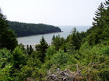 Fundy National Park of Canada 8.jpg