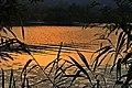 Gaga Gölü, Fatsa, Ordu - panoramio (3).jpg