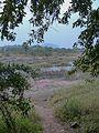 Ganeshpuri Akloli 2013 - panoramio (82).jpg