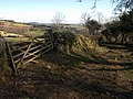 Gate by the bridleway - geograph.org.uk - 1180522.jpg