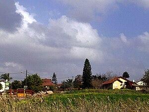 Gefen - Image: Geffen 2011