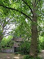 Gent Edgard Blancquaertstraat 28 - 203535 - onroerenderfgoed.jpg