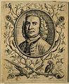 George Edwards. Etching, 1741. Wellcome V0001741.jpg
