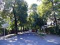 Gesundbrunnen Wilhelm-Kuhr-Straße.jpg