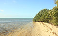 Gfp-florida-keys-long-key-state-park-sea-and-shore.jpg