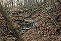 Gfp-iowa-pikes-peak-state-park-dried-stream.jpg