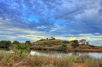 Galveston Island State Park - Coastal dune habitat in the park.