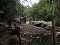 Gibberagong Trail - panoramio (13).jpg