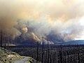 Gila National Forest (7282037236).jpg