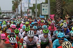 The peloton on Stage 2 in Tel Aviv