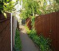 Gitty between new buildings in Ockbrook.jpg