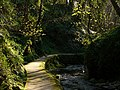 Glen Maye, evening sunlight - geograph.org.uk - 780716.jpg