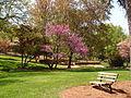 Glencairn Gardens Rock Hill SC.jpg