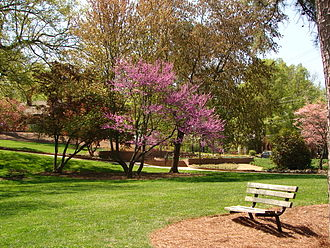 York County, South Carolina - Glencairn Gardens in Rock Hill