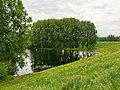 Good Morning - Druten NL (26985492712).jpg