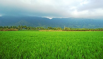 Nagercoil - 200px