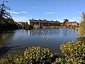Gresford village pond.jpg