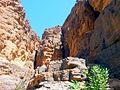 Guelta de Tikoubaouinee en vue dominante.jpg
