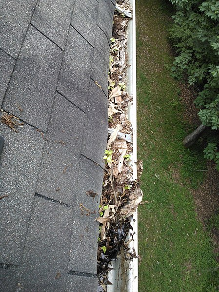 File:Gutter in need of cleaning.jpg