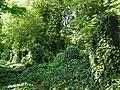 Hřbitov - Olšanské hřbitovy (Žižkov), Praha 3, Vinohradská, Želivského, Jičínská, Žižkov - oddíl II, jiná část.JPG