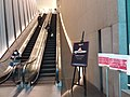 HK TST 尖沙咀 Tsim Sha Tsui 北京道壹號 One Peking Road escalators March 2020 SSG.jpg