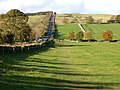 Hadrian's Wall and the Military Road - geograph.org.uk - 1017679.jpg
